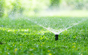 A watering system is the easiest and most efficient way to keep your garden green.