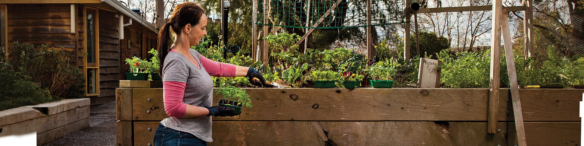 DIY Vegetable Garden Box