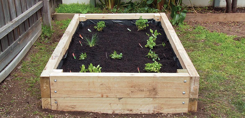 How To Build A Veggie Garden